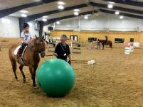 Therapeutic horse riding in indoor arena with ball