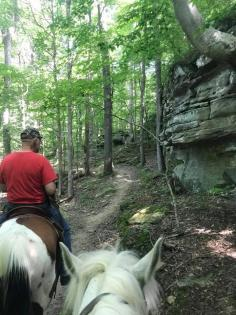 Horse and rider near bluff at East Trigg Trailhead, Jackson Falls in the Shawnee National Forest