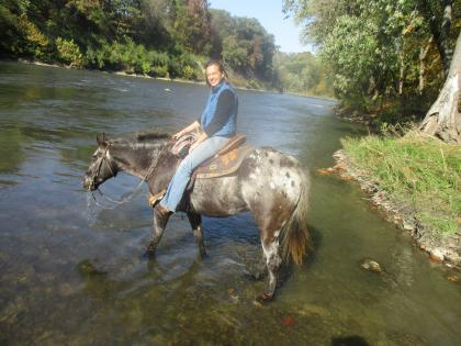 Horse and trailrider in the river at Matthiessen State Park in Oglesby, Illinois.