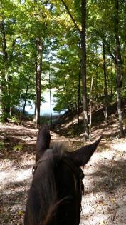 Looking through horse ears at forest at Wolf Creek State Park