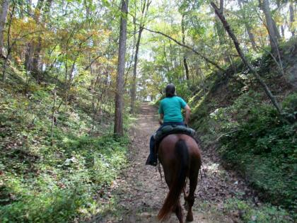Horseback riding at Siloam Springs State Park wooded trail in Clayton Illinois.