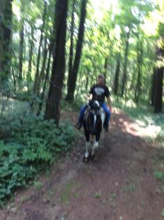 Horse and rider on the equestrian trail in the forest at Morrison-Rockwood State Park